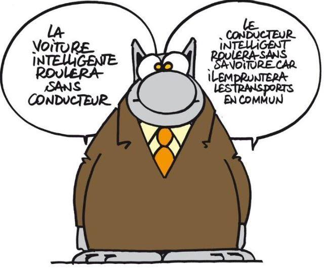 lechat_conducteur_intelligent